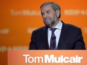 MULCAIR_TOM