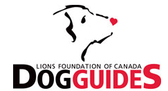 dog guides