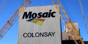 MOSAIC_COLONSAYcc