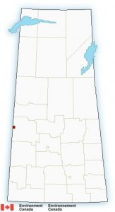 (Small red-highlighted area symbolizes the extreme cold warning in the city of Lloydminster. Courtesy: Environment Canada)
